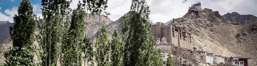 article couv ladakh graffiti deco ©heta-11