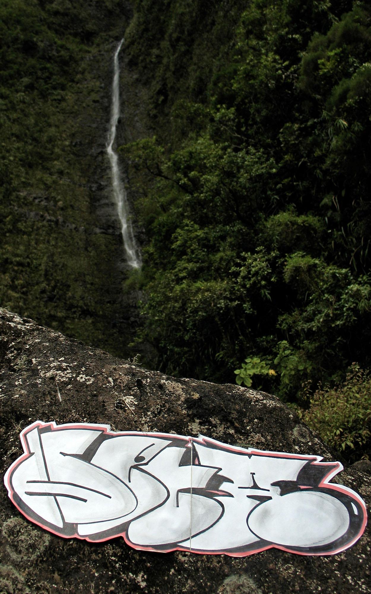 Ile-Reunion-1