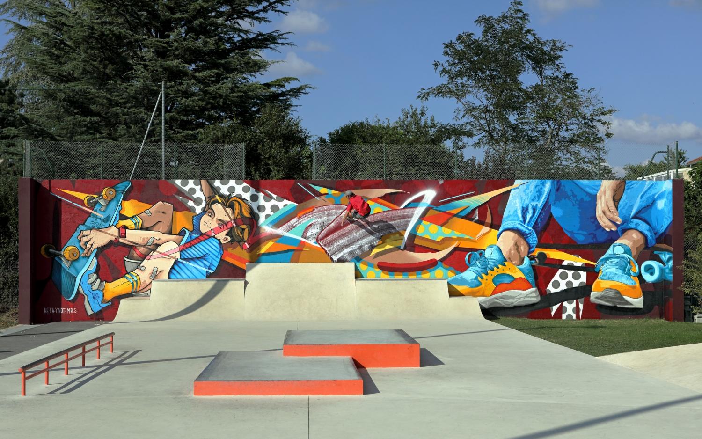 Chaponost-skatepark-wallrride